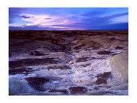 Bisti/De-Na-Zin Wilderness, New Mexico