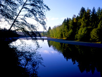 Queets River, Queets Rainforest, Olympic National Park, Washington