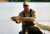 Trout (Oncorhynchus)