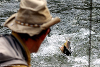 National Fly Fishing Championship